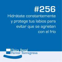 Ferrer Torregrosa – Publicaciones (10×10 cm) #256