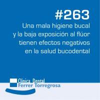 Ferrer Torregrosa – Publicaciones (10×10 cm) #263
