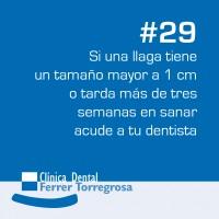 Ferrer Torregrosa – Publicaciones (10×10 cm) #29