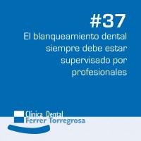 Ferrer Torregrosa – Publicaciones (10×10 cm) #37