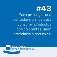 Ferrer Torregrosa – Publicaciones (10×10 cm) #43