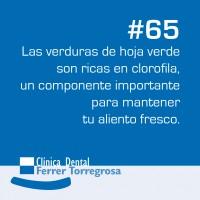 Ferrer Torregrosa – Publicaciones (10×10 cm) #65